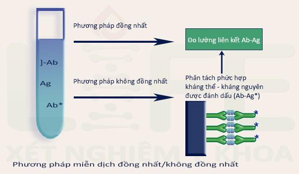 phuong-phap-mien-dich-dong-nhat